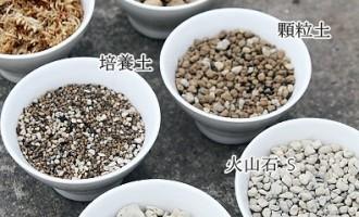 适合种植多肉的介质/土壤