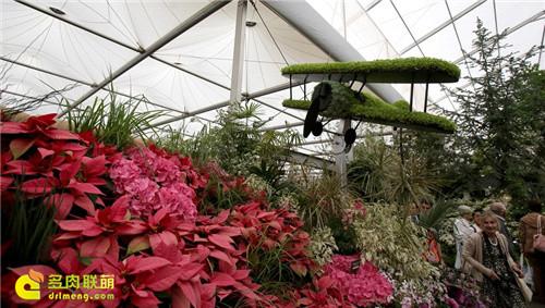2014切尔西花卉展(Chelsea Garden Show)之10
