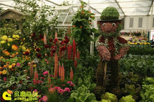 2014切尔西花卉展(Chelsea Garden Show)之14