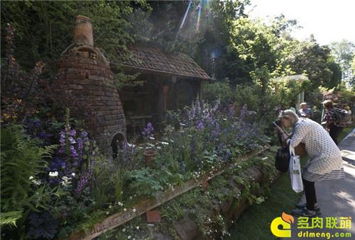 2014切尔西花卉展(Chelsea Garden Show)之16