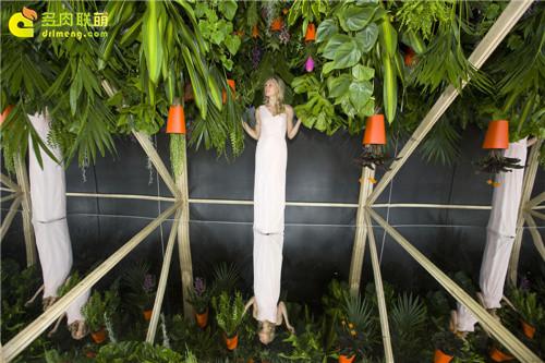 2014切尔西花卉展(Chelsea Garden Show)之8