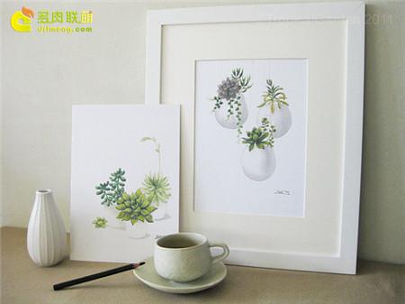 多肉植物水彩画系列之15