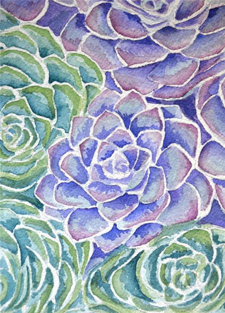 多肉植物水彩画系列之9