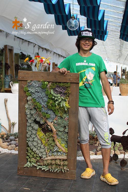 二木和完工的多肉植物画框
