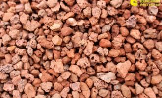 火山石,最早火起来的颗粒土