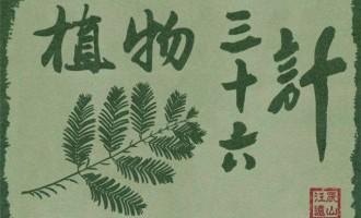 植物的36计(上)