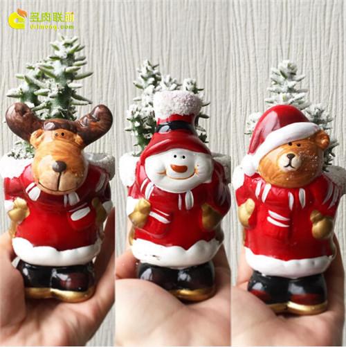 多肉圣诞礼物-个性花盆多肉-5