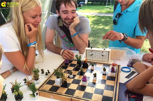 多肉植物与创意国际象棋