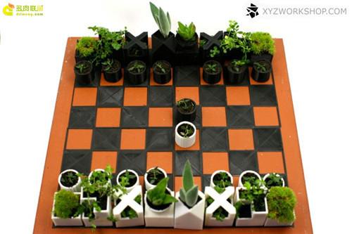 多肉植物与创意国际象棋-2
