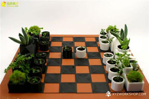 多肉植物与创意国际象棋-3