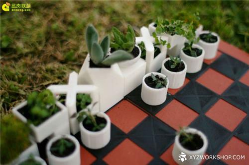 多肉植物与创意国际象棋-4