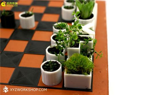 多肉植物与创意国际象棋-5