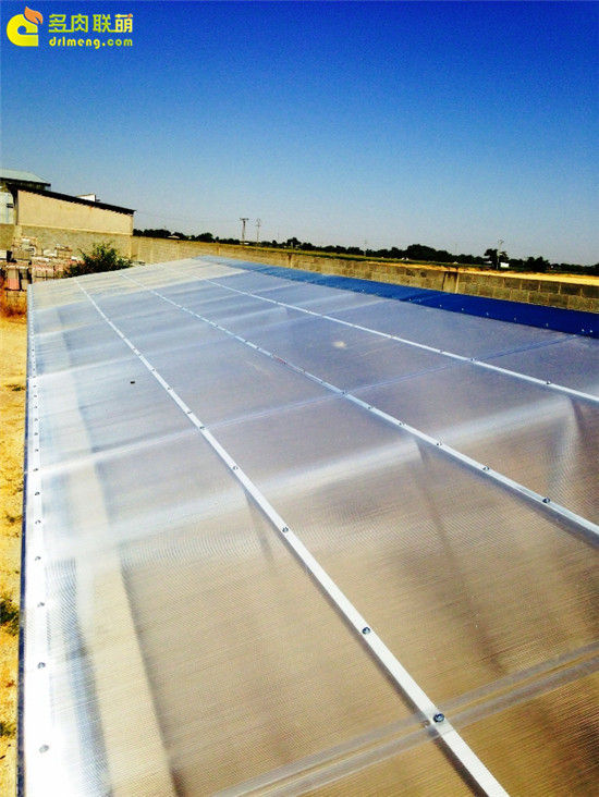 国外大棚/温室建设流程-12