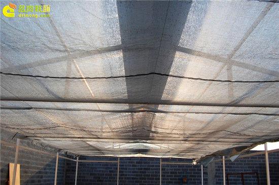 国外大棚/温室建设流程-15