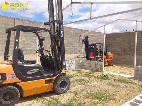 国外大棚/温室建设流程-5