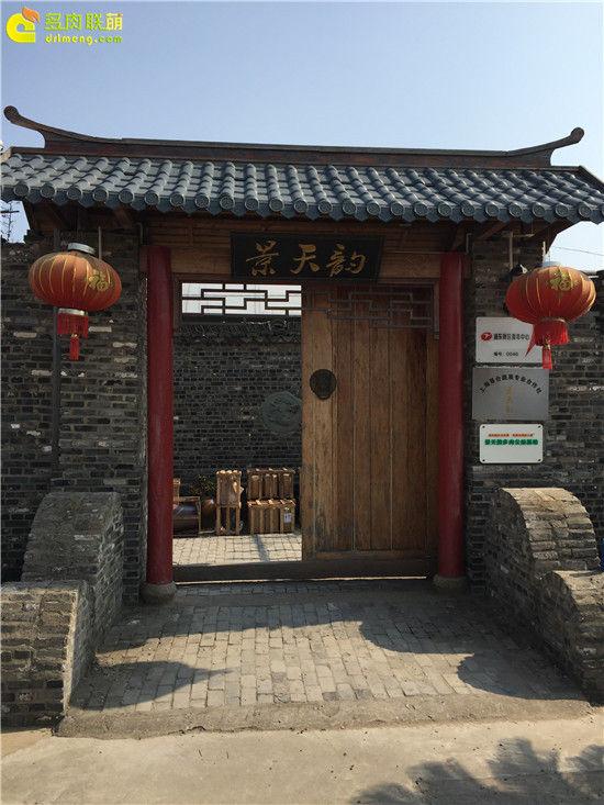 上海景天韵多肉美景-1