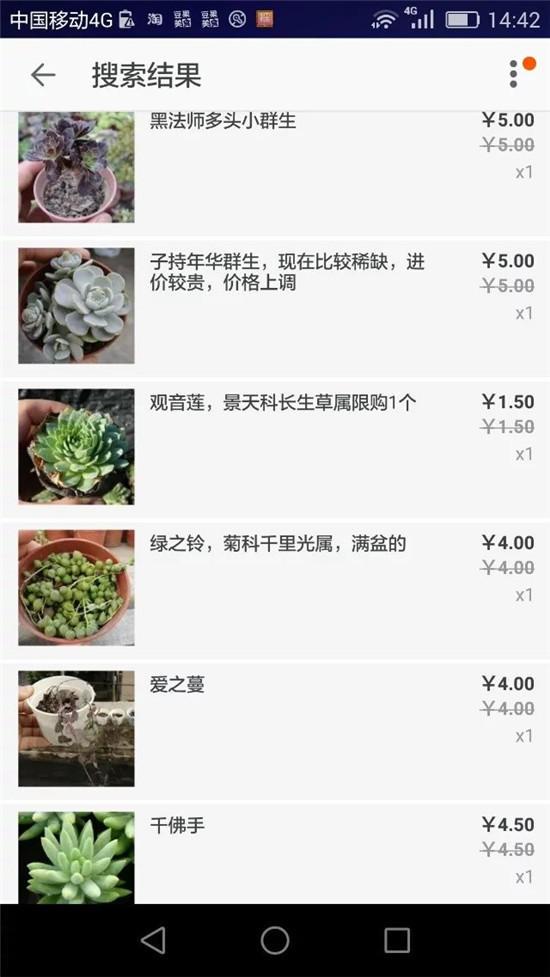 多肉植物的记录-1