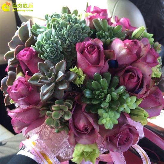 多肉植物新娘捧花