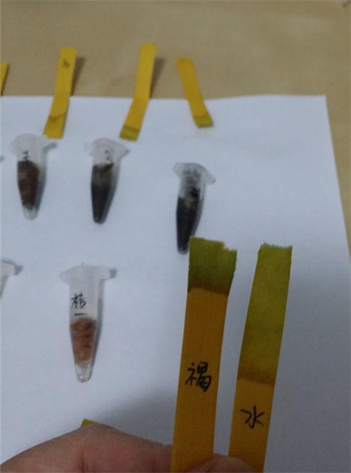 怎么测试多肉介质的PH值-14