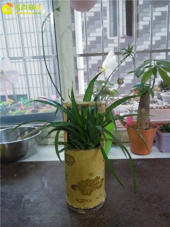 手工雕刻竹筒花盆制作教程-17