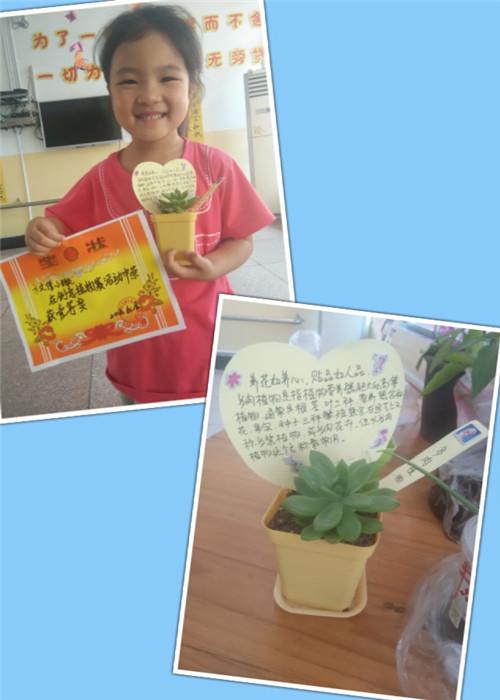 幼儿园里的多肉植物-24
