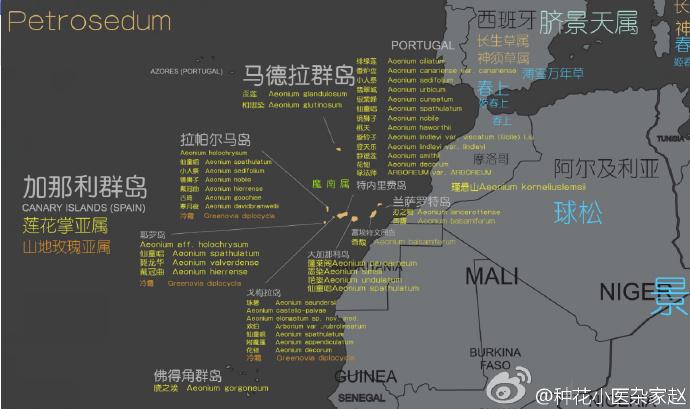 多肉植物世界分布地图-3