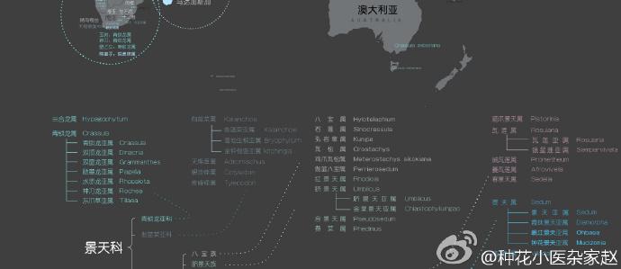 多肉植物世界分布地图-4