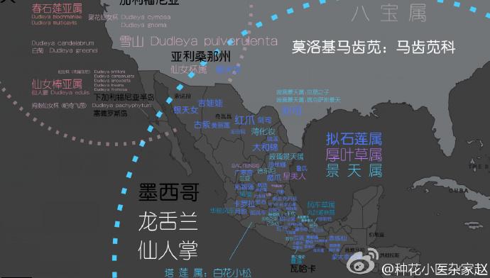 多肉植物世界分布地图-5