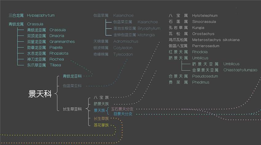 多肉植物世界分布地图-2