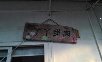 广州多肉植物大棚之旅