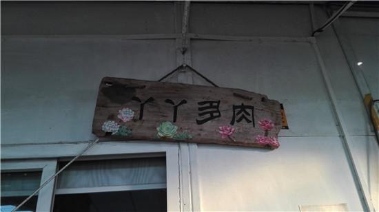 广州丫丫多肉植物大棚-1