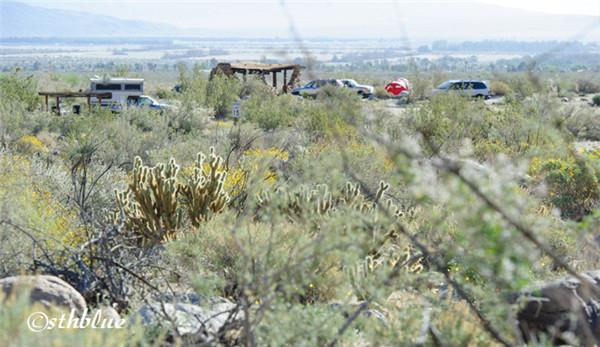 安沙波列哥沙漠州立公园美景-10