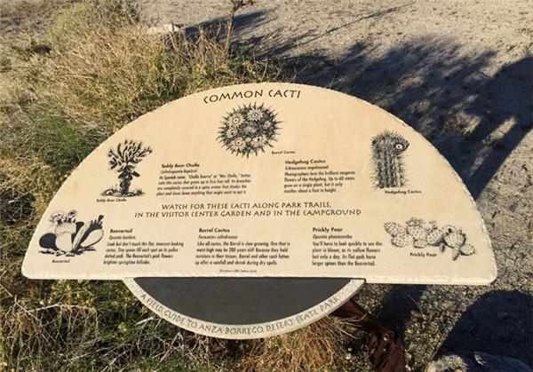 安沙波列哥沙漠州立公园美景-12
