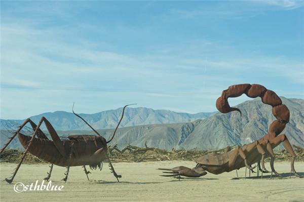 安沙波列哥沙漠州立公园美景-34