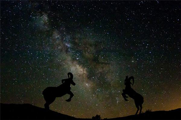 安沙波列哥沙漠州立公园美景-36