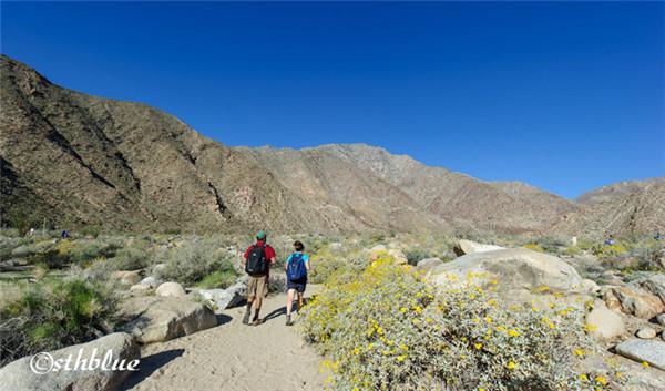 安沙波列哥沙漠州立公园美景-40