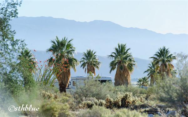 安沙波列哥沙漠州立公园美景-8