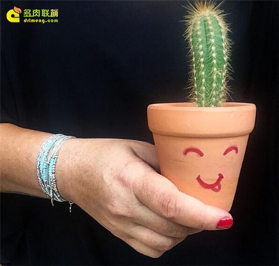 手绘有趣花盆-1