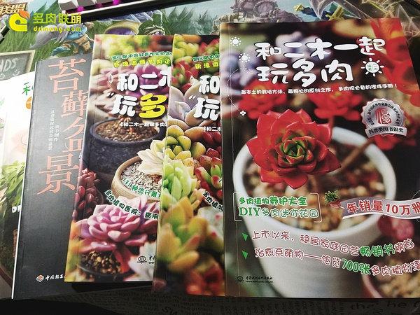二木的三本书