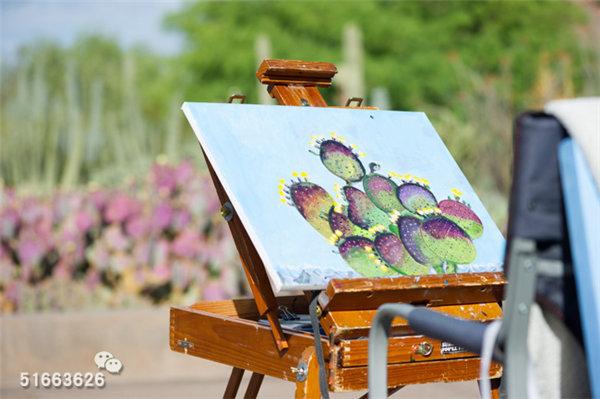 菲尼克斯沙漠植物园-13