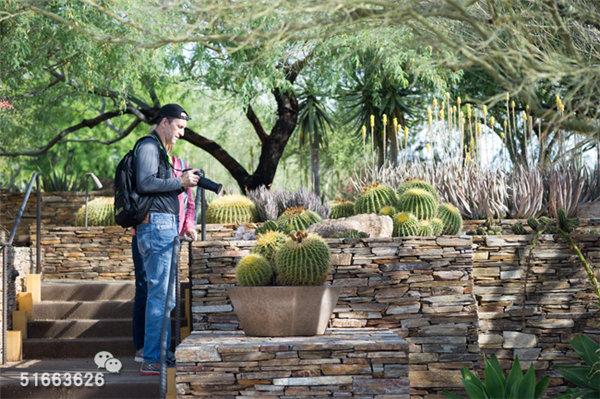菲尼克斯沙漠植物园-14