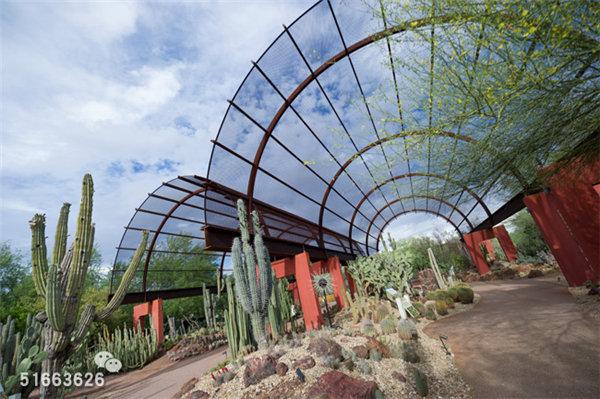 菲尼克斯沙漠植物园-36