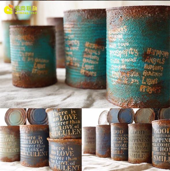 铁罐做的多肉花盆-3