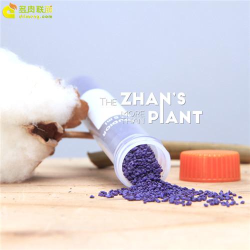 多肉植物小紫药