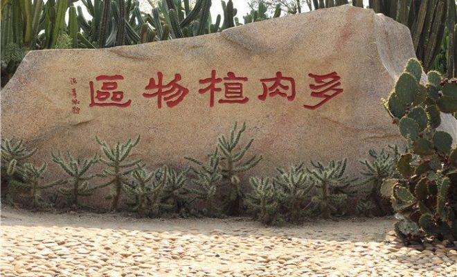 夏天里万石植物园的优乐国际娱乐老虎机