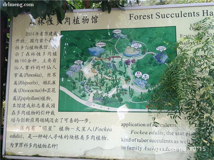 森林性多肉植物馆里简介