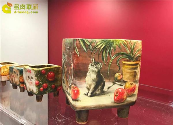 2017上海国际多肉展展出的多肉
