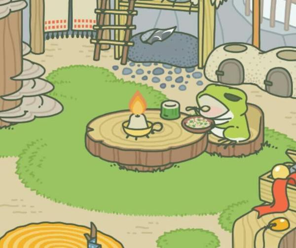 养蛙和养多肉植物