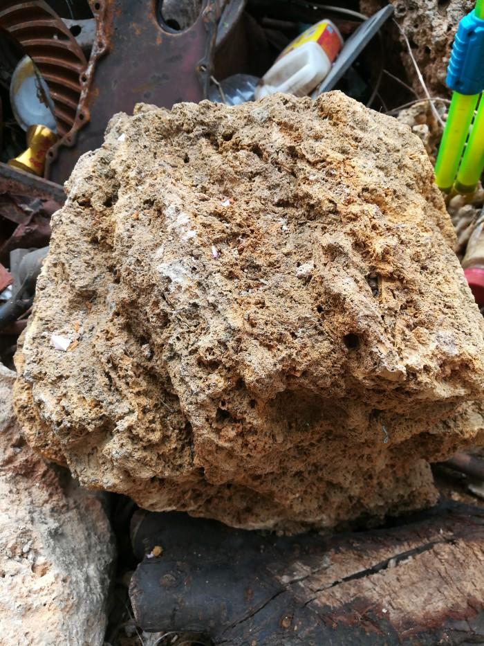 用石头制作花盆种植多肉的效果图