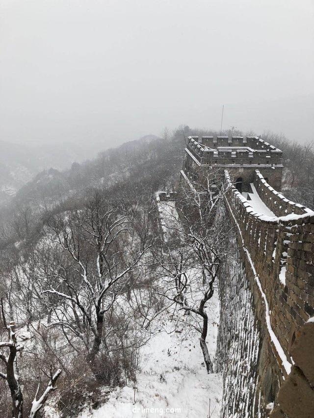 2018北京下了雪,那时的多肉
